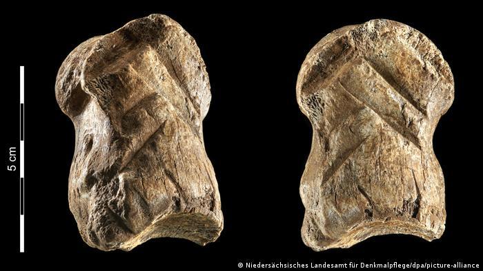 Los sorprendentes neandertales